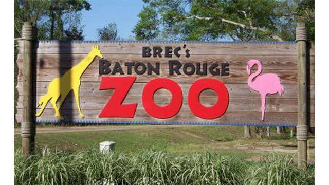 Tickets on sale for the Fourth Annual BREW at the Zoo