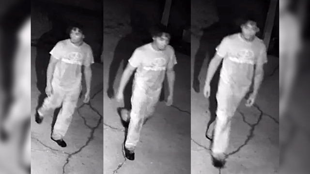 WANTED: Zachary PD searching for vehicle burglary suspect