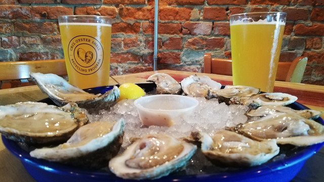 Shell-a-bration to raise awareness about oyster shell recycling
